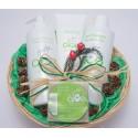 Baby Aloe Vera gift basket.
